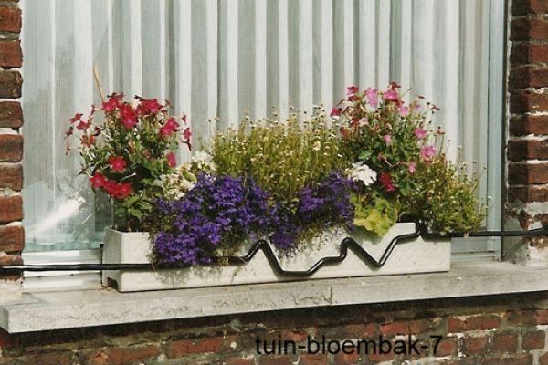 tuin-bloembak-753656D62-6543-FC47-4C63-FDB134464EFF.jpg