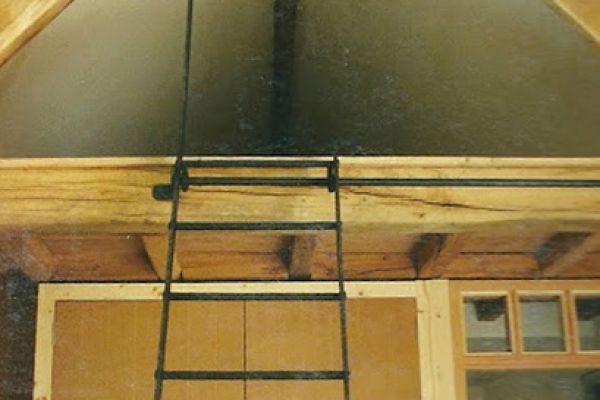 trap-ladder-1D9680A29-758C-0C94-5DCB-11B25EF73734.jpg